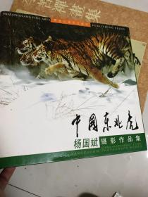 中国东北虎【杨国斌摄影作品集,硬精装】12开 印数2000册