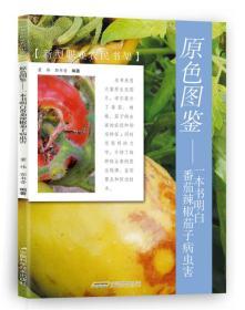 原色图鉴 一本书明白番茄辣椒茄子病虫害/新型职业农民书架