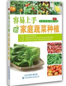 容易上手的家庭蔬菜种植