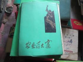 老日记本:农业学大寨