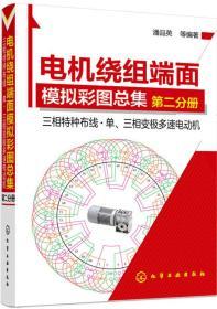 电机绕组端面模拟彩图总集