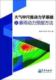 大气中尺度动力学基础及暴雨动力预报方法