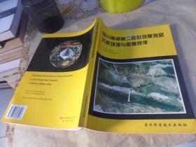 四川南部晚二叠世合煤地层沉积环境与聚煤规律  (16开原版现货)