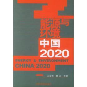 能源与环境中国2020