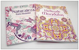 图案 曼荼罗填色本 自然 着色本Heilende Mandalas
