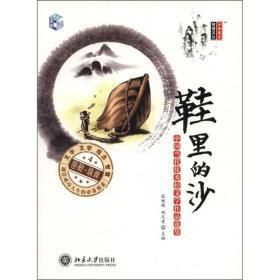 鞋里的沙:中国当代优秀轻文学作品选集(4)