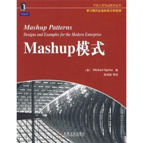 开发人员专业技术丛书:Mashup模式