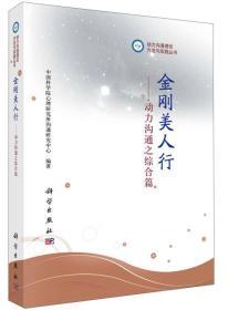 动力沟通理论、方法与实践丛书·金刚美人行:动力沟通之综合篇