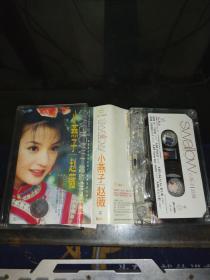 磁带-【有歌词】 小燕子赵薇:飞越时空的精灵