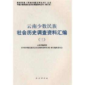 云南少数民族社会历史调查资料汇编3