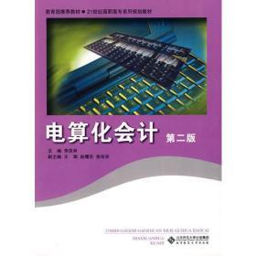 电算化会计(第二版)