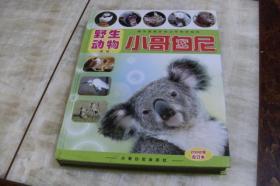 小哥白尼·野生动物画报<2008年合订本>(硬精装大16开 有描述有清晰书影供参考  该书净重近1.5公斤)