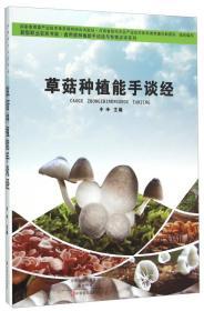 草菇种植能手谈经
