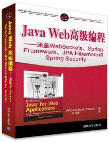 Java Web高级编程:涵盖WebSockets、Spring Framework、JPA Hibernate和Spring Security
