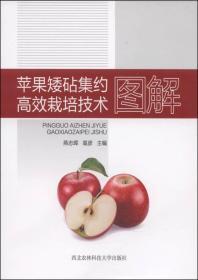 苹果矮砧集约高效栽培技术图解