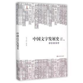 中国文字发展史:民族文字卷