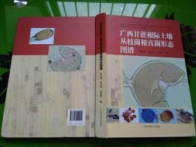 广西甘蔗根际土壤丛枝菌根真菌形态图谱