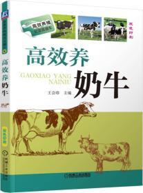 高效养奶牛-双色印刷