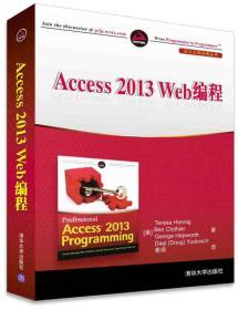 Access 2013 Web编程