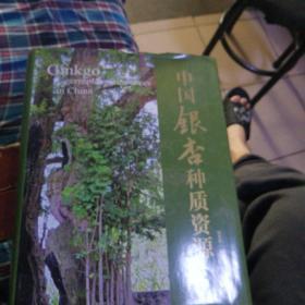 中国银杏种质资源
