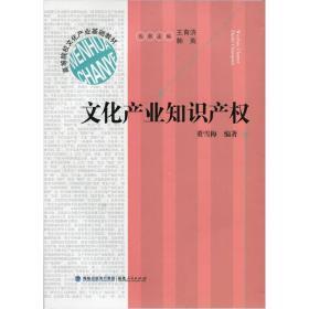 正版二手正版文化产业知识产权福建人民出版社9787211065004董雪梅有笔记