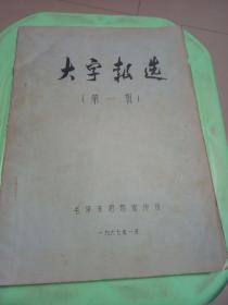 大字报选(第一辑)