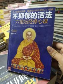 不抑郁的活法:六祖坛经修心课