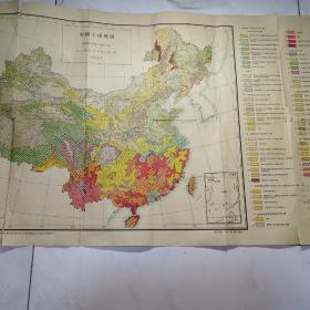 中国土壤图  1959年