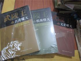 长篇历史传奇系列小说:武陵王之文星曜天、恨海情天、白虎啸天(三册合售)