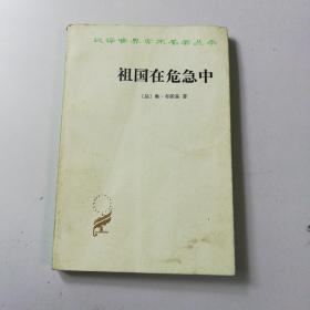 汉译世界名著学术丛书(祖国在危急中)