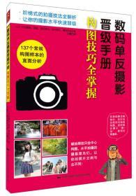 数码单反摄影晋级手册