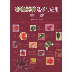 彩色树种选择与应用集锦
