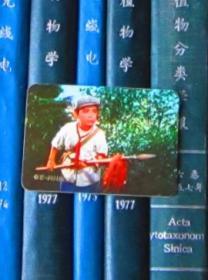 年历片-1975年:电影《闪闪的红星》(上海人民出版社)【一张】