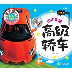 高级轿车(大字大图,轻松识字,快乐启蒙,亲子必备!)