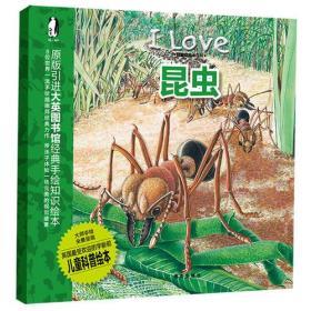 我爱动物小百科 昆虫