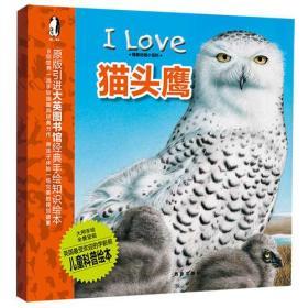 我爱动物小百科 猫头鹰