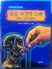 韩文原版医书 침술 14경락 도해 针灸术十四经络图解