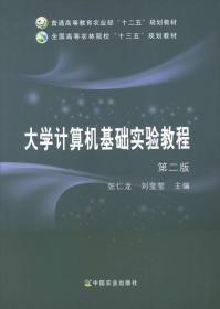 大学计算机基础实验教程(第2版)