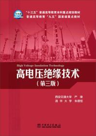 *高电压绝缘技术(第三版)