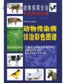 动物疾病诊治彩色图谱经典-动物传染病诊治彩色图谱.精装