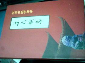 梁氏族志(大缺本,网上仅此一套,发行量只有250套)