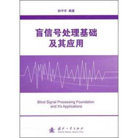 盲信号处理基础及其应用