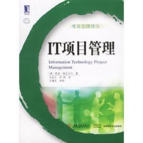 IT项目管理