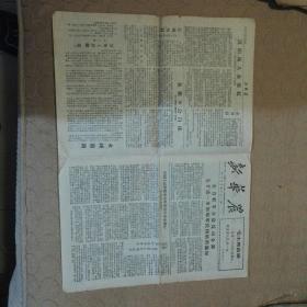 文革小报新华农(第14期1967年5月18日)