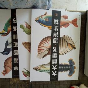 全脑智能训练书 恐龙+鸟类之美+大大翻翻书 海洋生物  3本合售