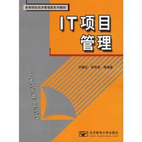 IT项目管理/高等院校经济管理类系列教材