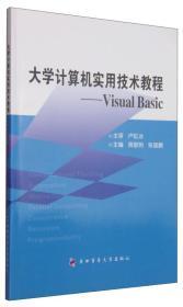 大学计算机实用技术教程:Visual Basic