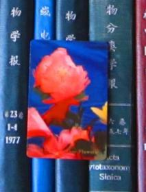 年历片-1975年:羽毛花(中国土产畜产进出口公司江苏省分公司)【一张】