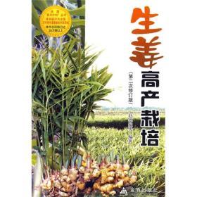 生姜高产栽培