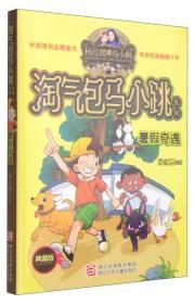 淘气包马小跳系列 典藏版:暑假奇遇